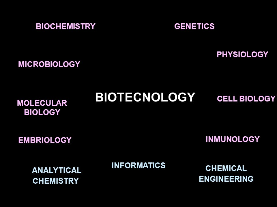 BIOTECNOLOGY BIOCHEMISTRY MICROBIOLOGY GENETICS PHYSIOLOGY EMBRIOLOGY INMUNOLOGY MOLECULAR BIOLOGY CELL BIOLOGY ANALYTICAL CHEMISTRY CHEMICAL ENGINEER