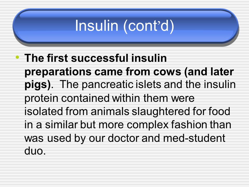 Insulin (cont ' d) The first successful insulin preparations came from cows (and later pigs). The pancreatic islets and the insulin protein contained