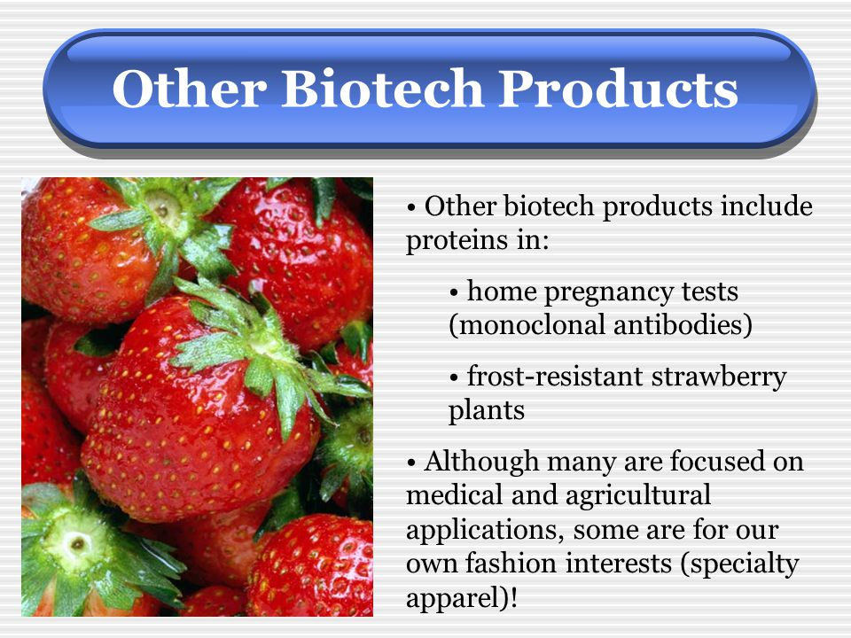 Other Biotech Products Other biotech products include proteins in: home pregnancy tests (monoclonal antibodies) frost-resistant strawberry plants Alth