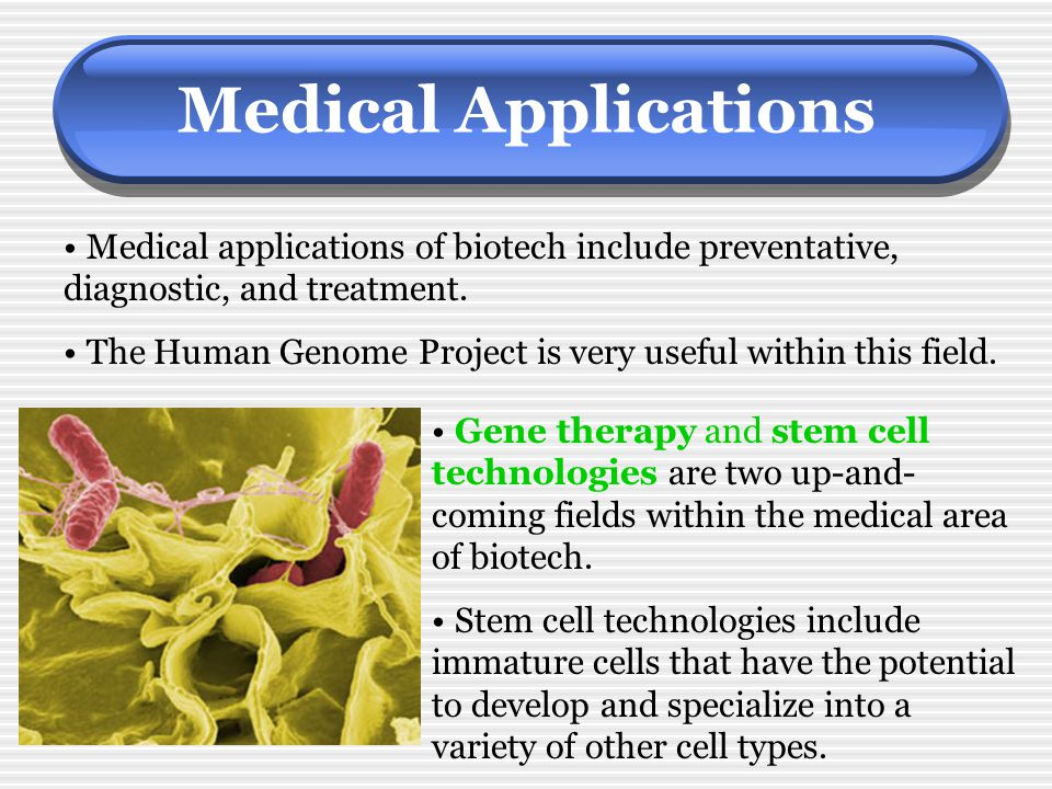 Medical Applications Medical applications of biotech include preventative, diagnostic, and treatment. The Human Genome Project is very useful within t