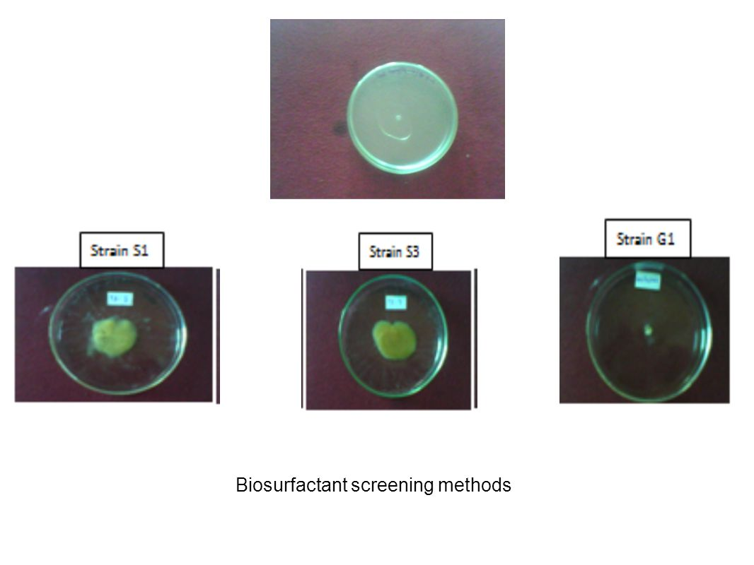 Biosurfactant screening methods