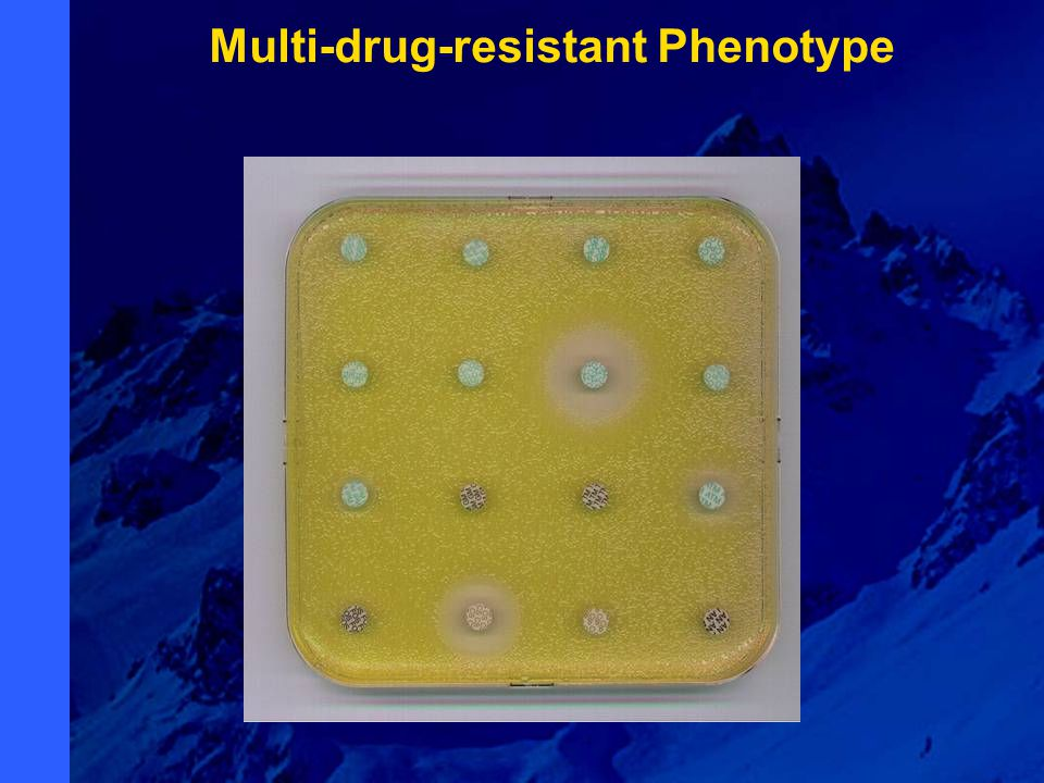 Multi-drug-resistant Phenotype