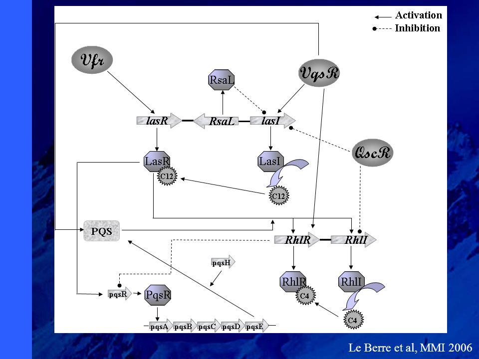 Le Berre et al, MMI 2006