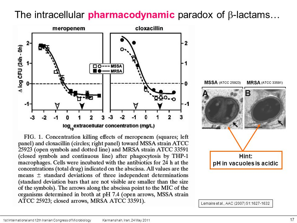 Karmanshah, Iran, 24 May 20111st International and 12th Iranian Congress of Microbiology 17 The intracellular pharmacodynamic paradox of  -lactams… Hint: pH in vacuoles is acidic Lemaire et al., AAC (2007) 51:1627-1632