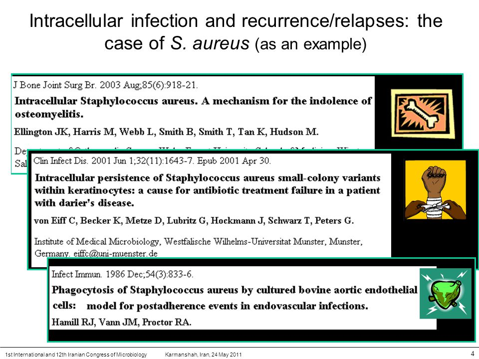 Karmanshah, Iran, 24 May 20111st International and 12th Iranian Congress of Microbiology 4 Intracellular infection and recurrence/relapses: the case of S.