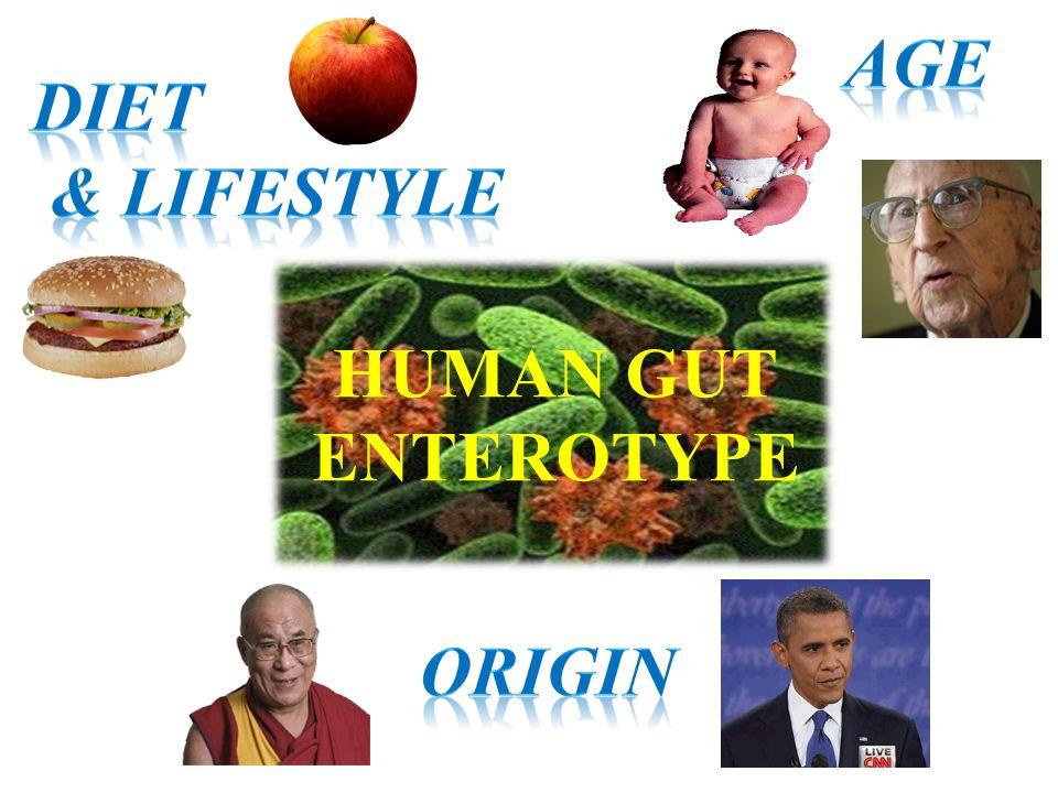 HUMAN GUT ENTEROTYPE