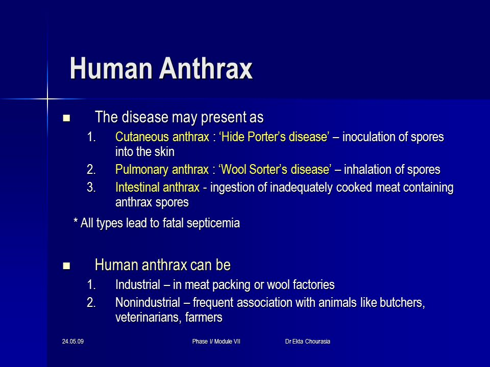24.05.09Phase I/ Module VII Dr Ekta Chourasia Human Anthrax The disease may present as The disease may present as 1.Cutaneous anthrax : 'Hide Porter's disease' – inoculation of spores into the skin 2.Pulmonary anthrax : 'Wool Sorter's disease' – inhalation of spores 3.Intestinal anthrax - ingestion of inadequately cooked meat containing anthrax spores * All types lead to fatal septicemia * All types lead to fatal septicemia Human anthrax can be Human anthrax can be 1.Industrial – in meat packing or wool factories 2.Nonindustrial – frequent association with animals like butchers, veterinarians, farmers