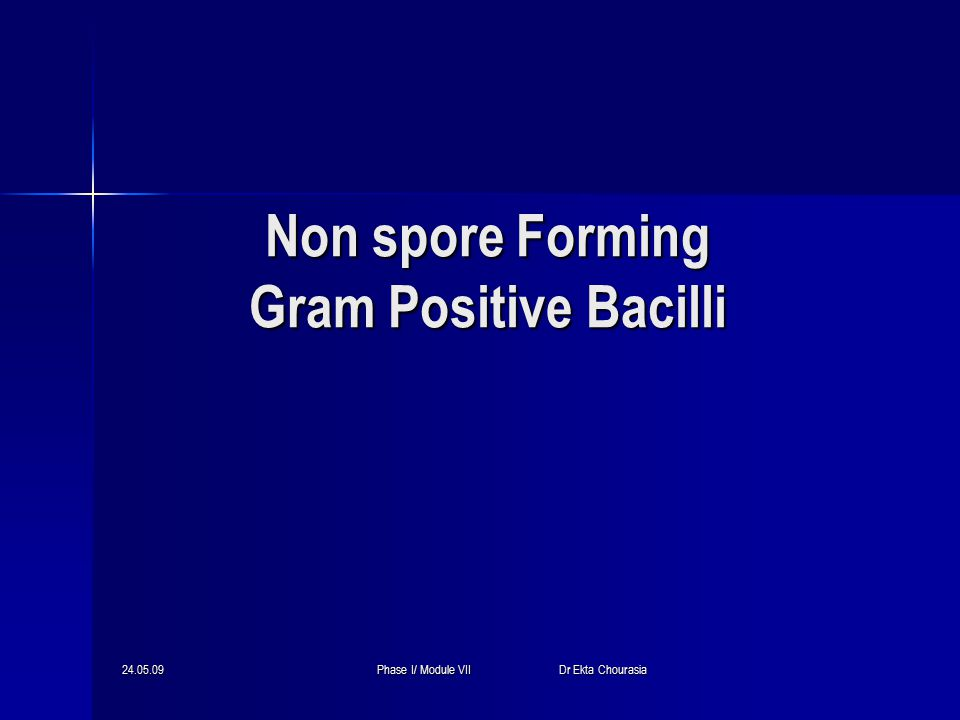 24.05.09Phase I/ Module VII Dr Ekta Chourasia Non spore Forming Gram Positive Bacilli