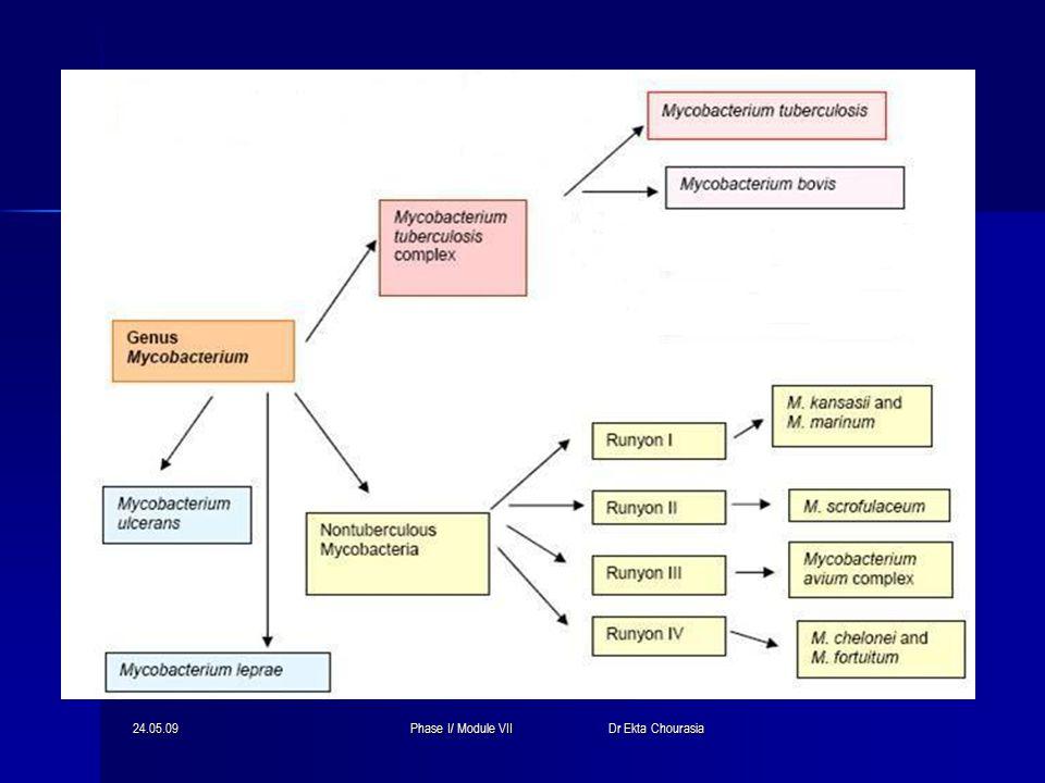 24.05.09Phase I/ Module VII Dr Ekta Chourasia