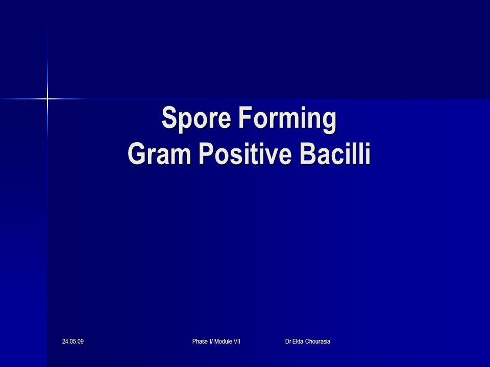 24.05.09Phase I/ Module VII Dr Ekta Chourasia Spore Forming Gram Positive Bacilli