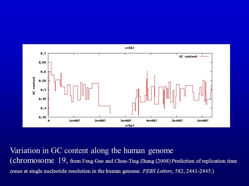 rRNA Ban et al. Science 289:905-920, 2000) RNA - gray Peptide - gold backbone