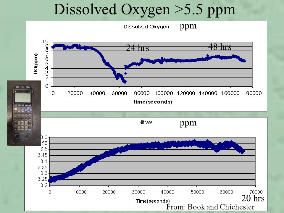 ppm 24 hrs 20 hrs 48 hrs Dissolved Oxygen >5.5 ppm From: Book and Chichester