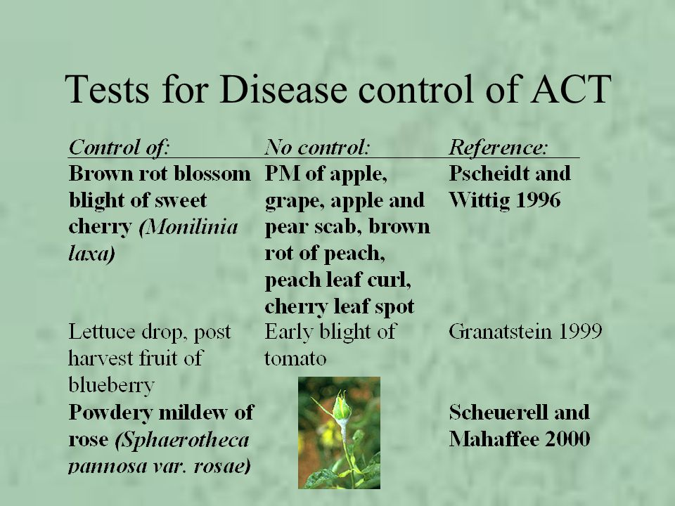 Tests for Disease control of ACT