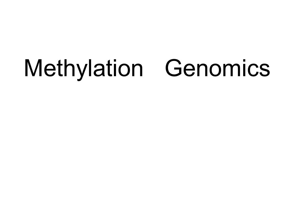 Methylation Genomics