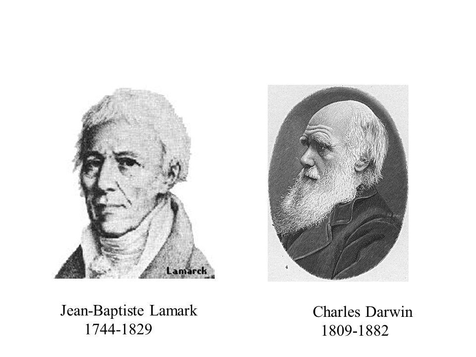 Jean-Baptiste Lamark 1744-1829 Charles Darwin 1809-1882