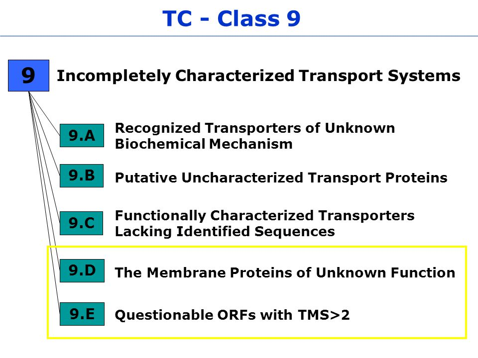 TC - Class 9 Incompletely Characterized Transport Systems Functionally Characterized Transporters Lacking Identified Sequences 9.C Recognized Transporters of Unknown Biochemical Mechanism 9.A Putative Uncharacterized Transport Proteins 9.B The Membrane Proteins of Unknown Function 9.D 9 9.E Questionable ORFs with TMS>2
