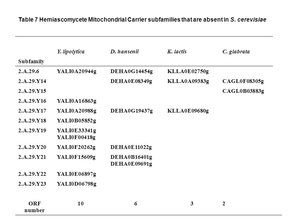 Table 7 Hemiascomycete Mitochondrial Carrier subfamilies that are absent in S.