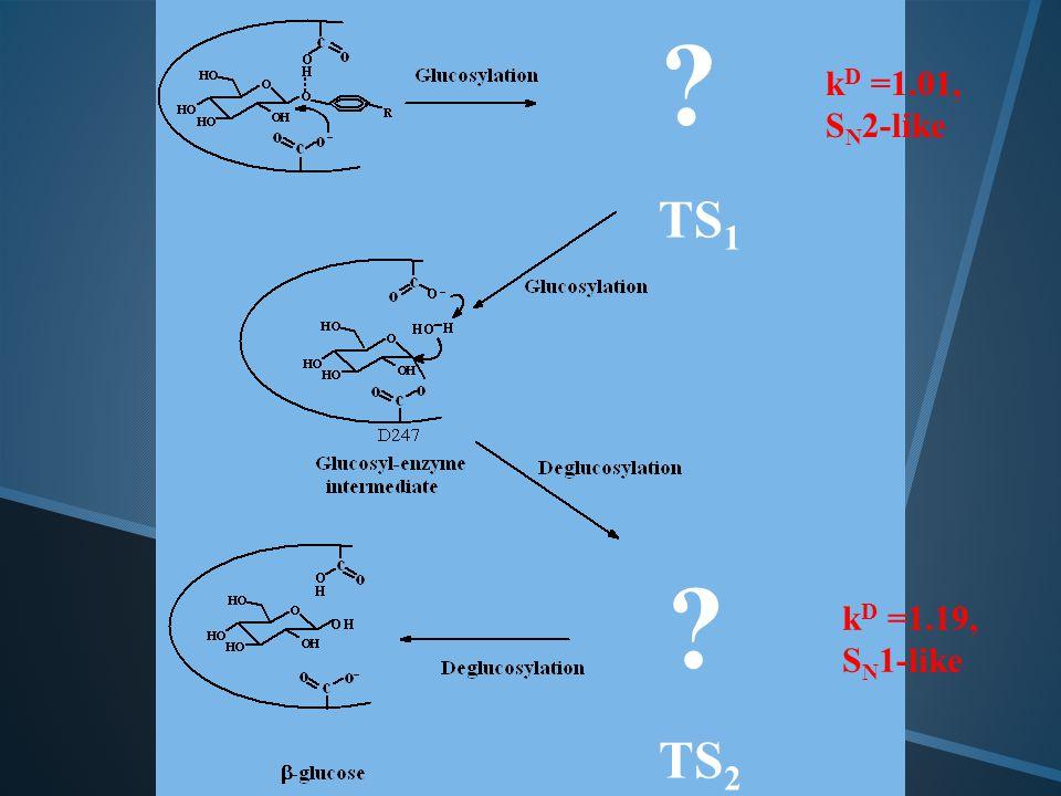 TS 1 TS 2 k D =1.01, S N 2-like k D =1.19, S N 1-like..