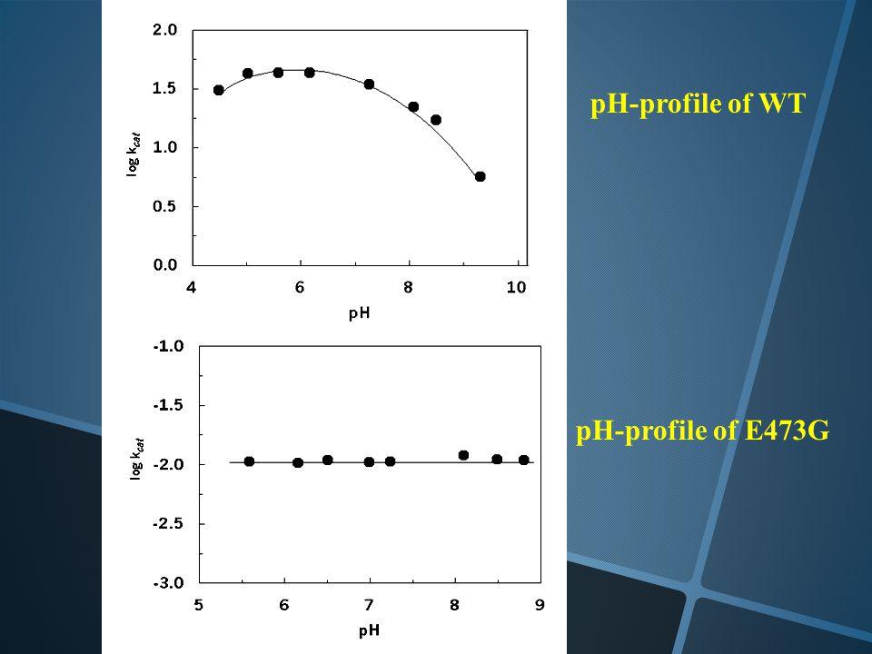 pH-profile of WT pH-profile of E473G