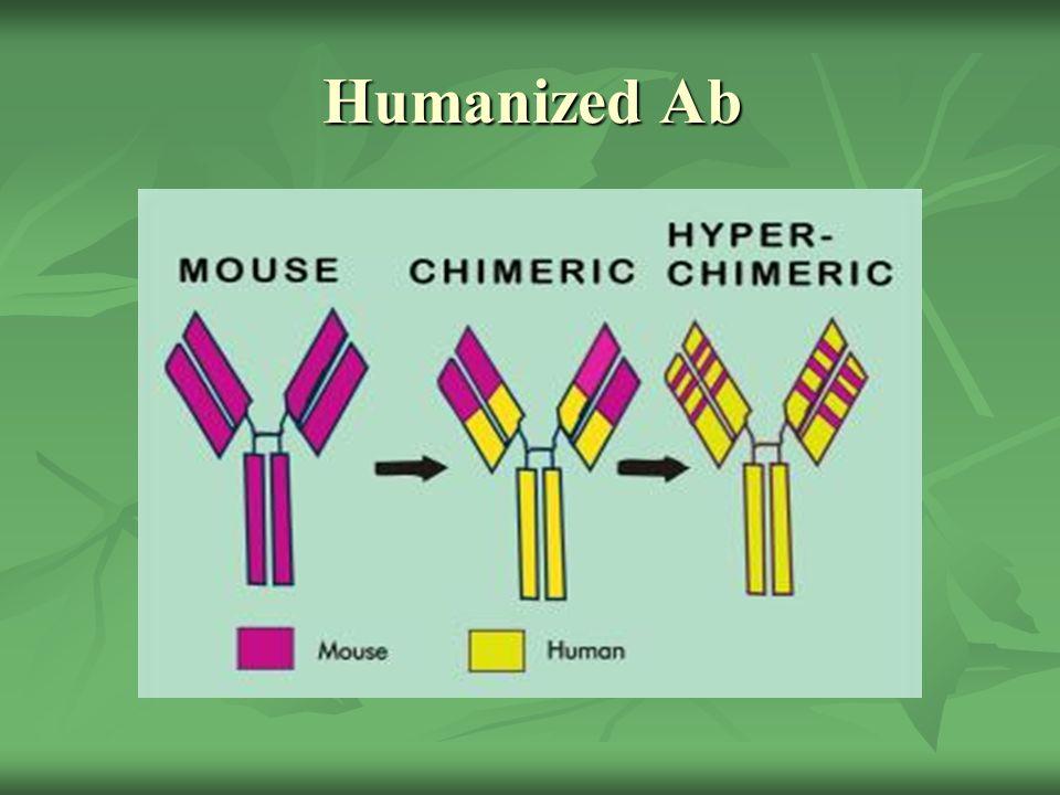 Humanized Ab