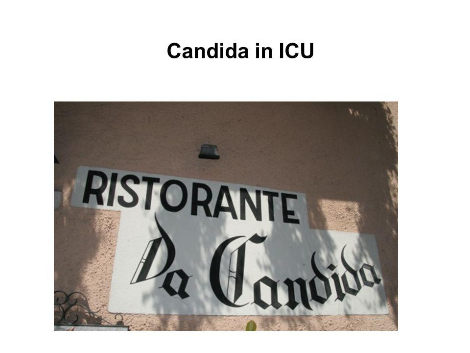 Candida in ICU