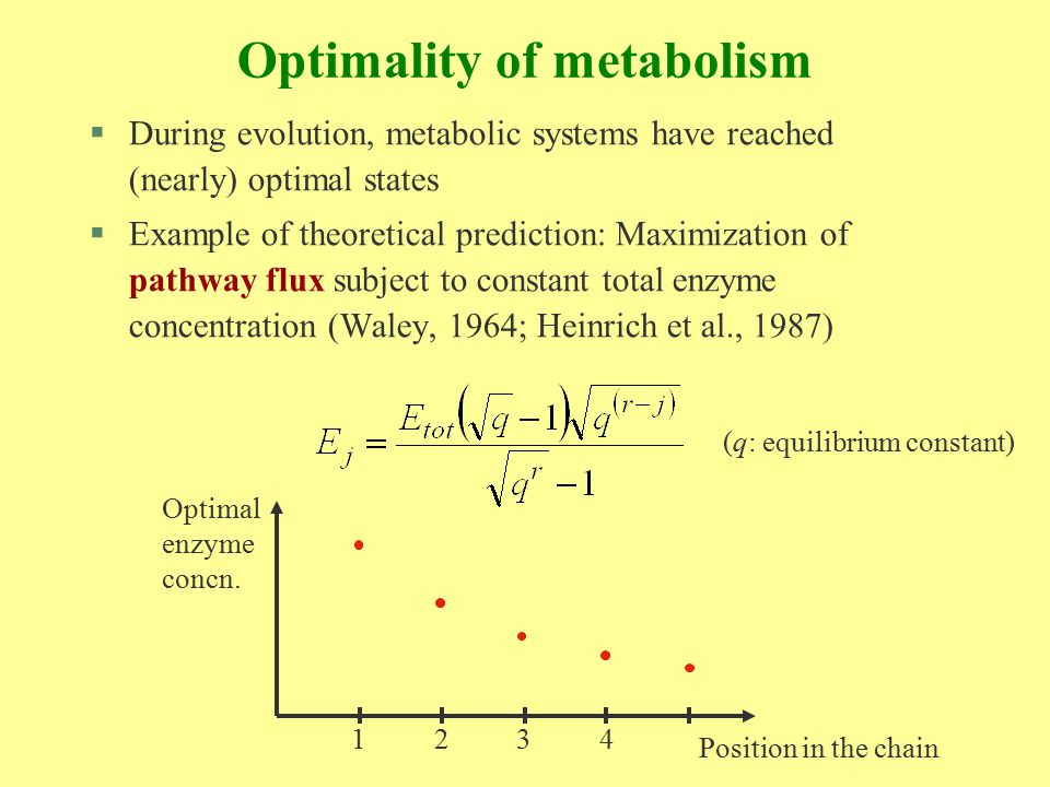 Optimality of metabolism (2) §However, there are more objective functions besides maximization of pathway flux §Maximum stability and other criteria have been suggested (Savageau, Heinrich, Schuster, …) §Here, we analyse maximum flux vs.