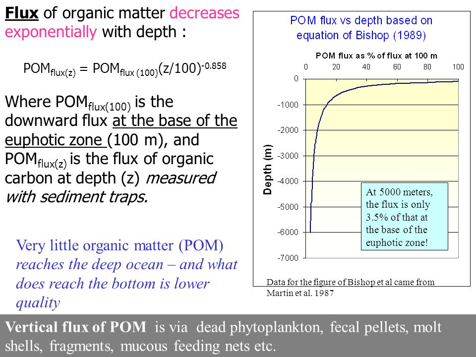Flux of organic matter decreases exponentially with depth : POM flux(z) = POM flux (100) (z/100) -0.858 Where POM flux(100) is the downward flux at th