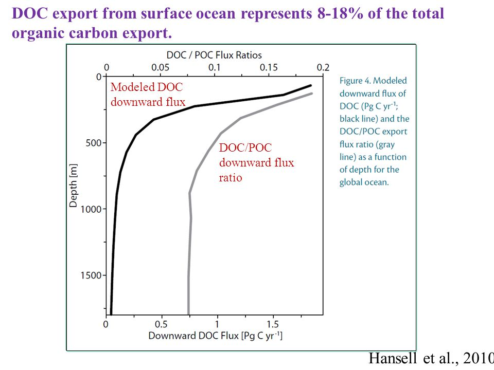 Hansell et al., 2010 Modeled DOC downward flux DOC/POC downward flux ratio DOC export from surface ocean represents 8-18% of the total organic carbon