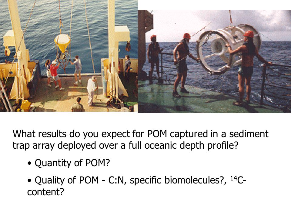 What results do you expect for POM captured in a sediment trap array deployed over a full oceanic depth profile? Quantity of POM? Quality of POM - C:N