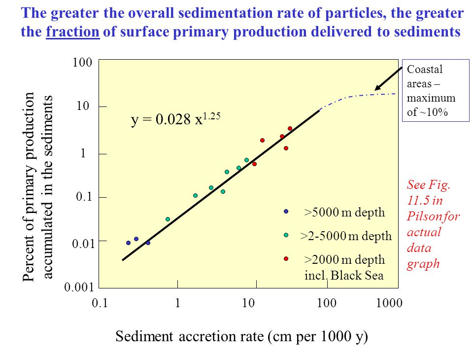 Sediment accretion rate (cm per 1000 y) 0.11101001000 0.001 0.01 0.1 1 10 100 Percent of primary production accumulated in the sediments >5000 m depth