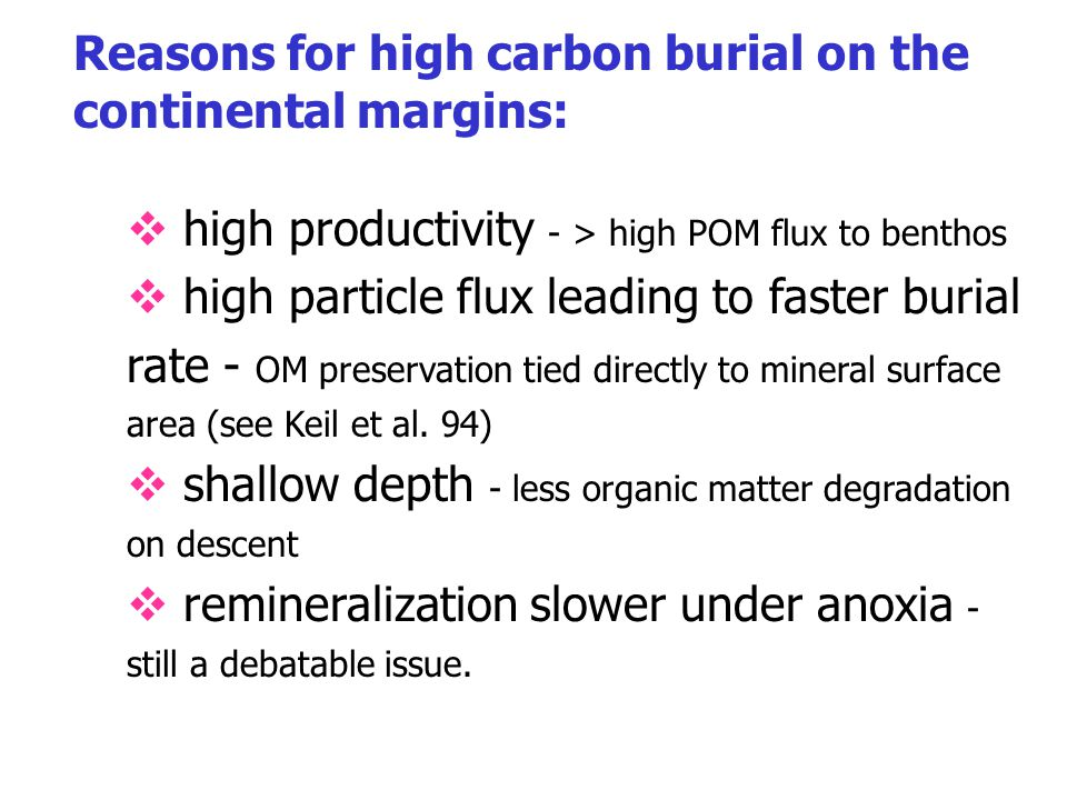 Reasons for high carbon burial on the continental margins:  high productivity - > high POM flux to benthos  high particle flux leading to faster bur