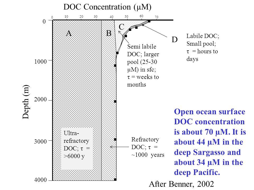 AB C D DOC Concentration (µM) 1000 2000 3000 4000 0 Depth (m) Ultra- refractory DOC; τ = >6000 y Refractory DOC; τ = ~1000 years Semi labile DOC; larg