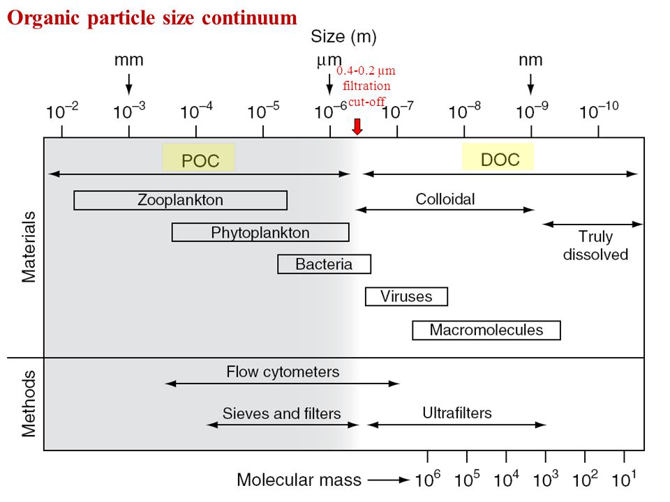 Organic particle size continuum 0.4-0.2 µm filtration cut-off
