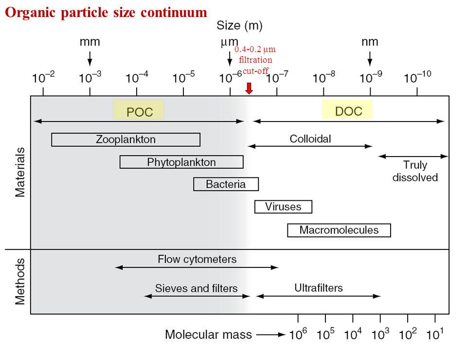 Hansell et al., 2010 Modeled DOC downward flux DOC/POC downward flux ratio DOC export from surface ocean represents 8-18% of the total organic carbon export.