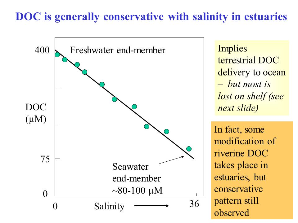 DOC (µM) Salinity 36 0 0 400 75 DOC is generally conservative with salinity in estuaries Freshwater end-member Seawater end-member ~80-100 µM Implies