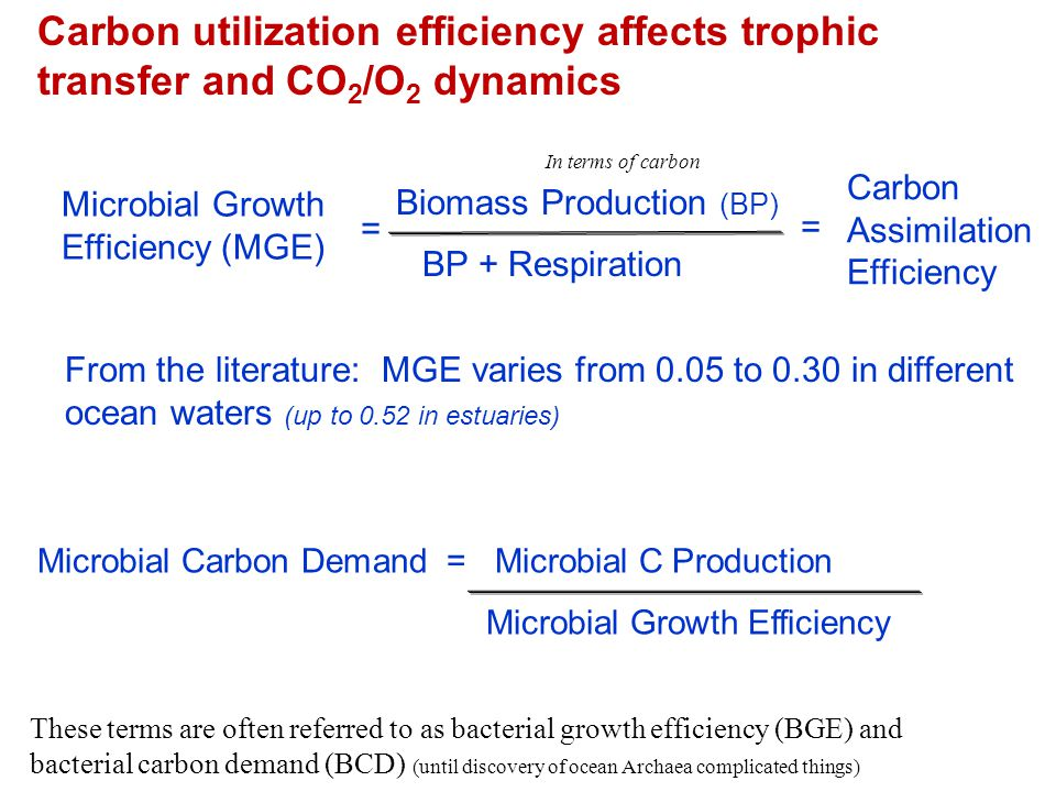 From the literature: MGE varies from 0.05 to 0.30 in different ocean waters (up to 0.52 in estuaries) Microbial Growth Efficiency (MGE) = Biomass Prod