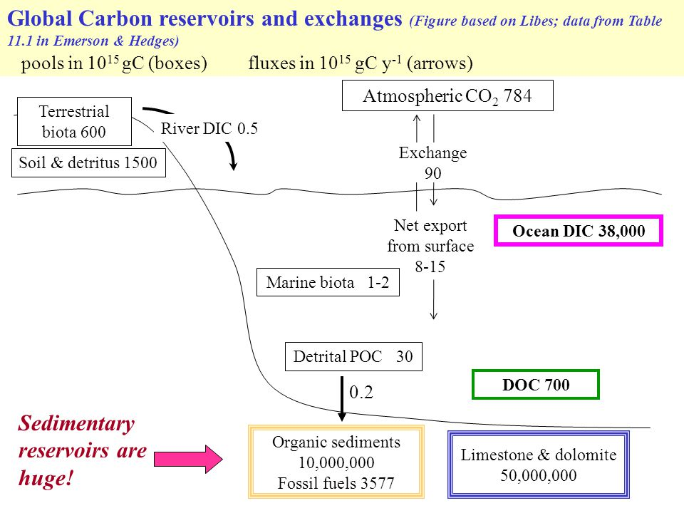 Monolayer equivalent Less than monolayer equivalent More than monolayer equivalent Percent of global organic carbon burial that occurs in different depositional environments.