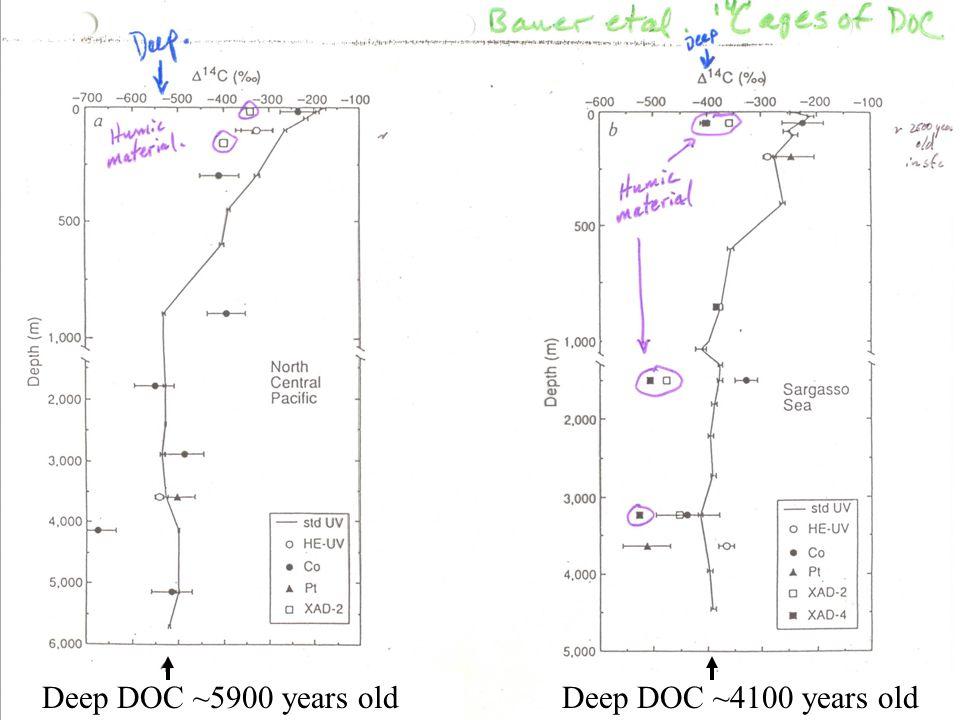 Deep DOC ~5900 years oldDeep DOC ~4100 years old