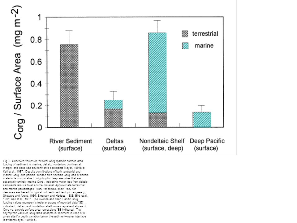 Fig. 2. Observed values of the total Corg rparticle surface area loading of sediment in riverine, deltaic, nondeltaic continental margin, and deep-sea
