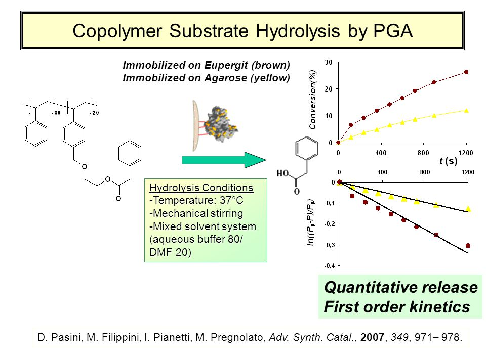 Copolymer Substrate Hydrolysis by PGA Hydrolysis Conditions -Temperature: 37°C -Mechanical stirring -Mixed solvent system (aqueous buffer 80/ DMF 20)