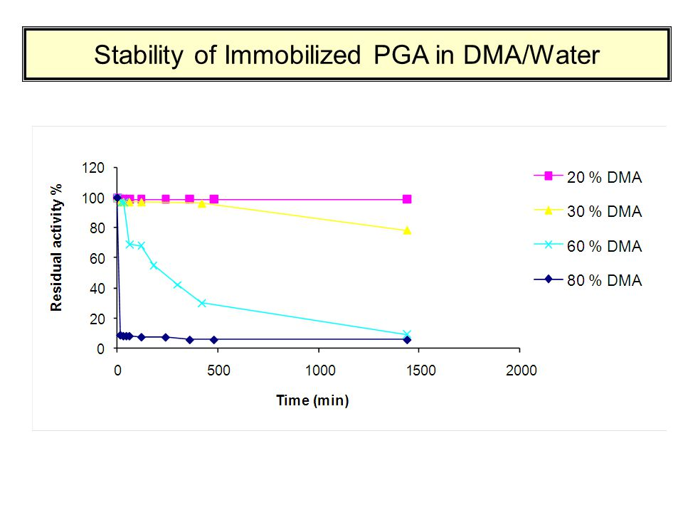 Stability of Immobilized PGA in DMA/Water