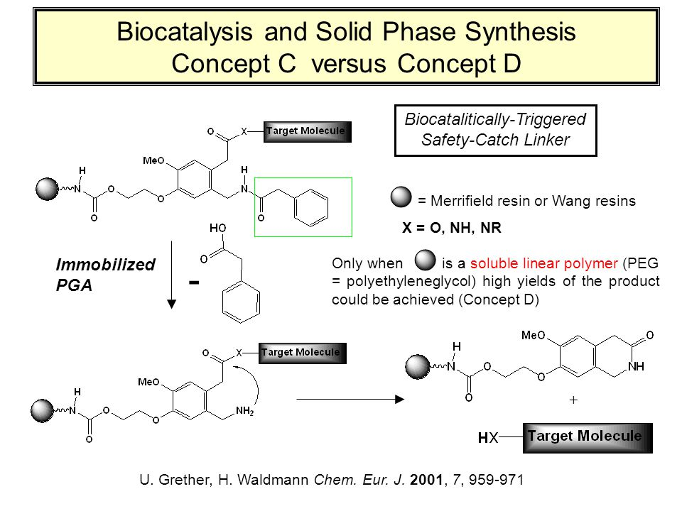 Biocatalysis and Solid Phase Synthesis Concept C versus Concept D U. Grether, H. Waldmann Chem. Eur. J. 2001, 7, 959-971 Immobilized PGA - X = O, NH,