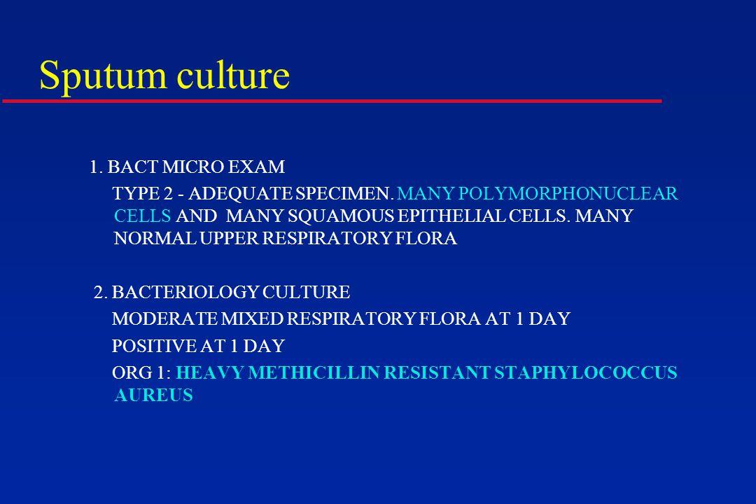 Sputum culture 1. BACT MICRO EXAM TYPE 2 - ADEQUATE SPECIMEN.