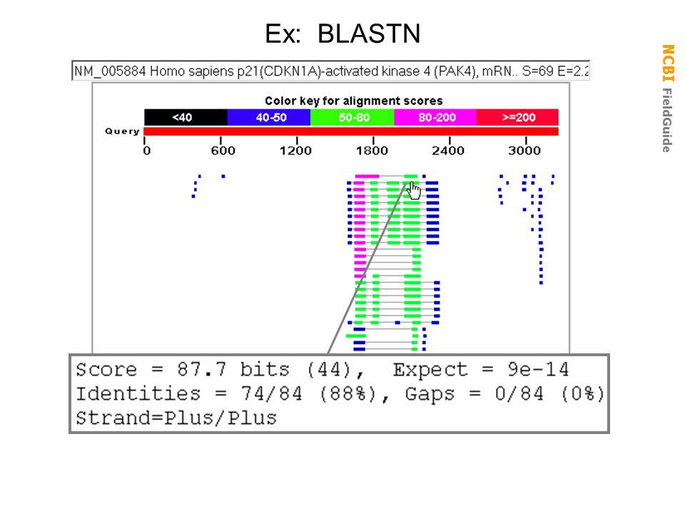 NCBI FieldGuide Ex: BLASTN