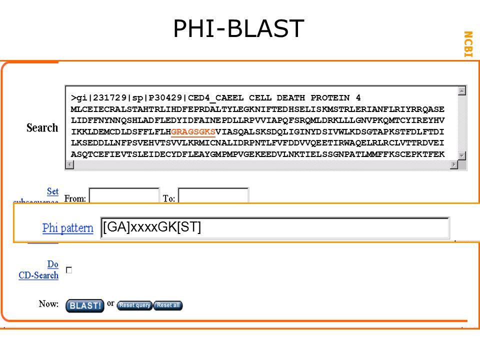 NCBI FieldGuide PHI-BLAST >gi|231729|sp|P30429|CED4_CAEEL CELL DEATH PROTEIN 4 MLCEIECRALSTAHTRLIHDFEPRDALTYLEGKNIFTEDHSELISKMSTRLERIANFLRIYRRQASE LIDFFNYNNQSHLADFLEDYIDFAINEPDLLRPVVIAPQFSRQMLDRKLLLGNVPKQMTCYIREYHV IKKLDEMCDLDSFFLFLHGRAGSGKSVIASQALSKSDQLIGINYDSIVWLKDSGTAPKSTFDLFTDI LKSEDDLLNFPSVEHVTSVVLKRMICNALIDRPNTLFVFDDVVQEETIRWAQELRLRCLVTTRDVEI ASQTCEFIEVTSLEIDECYDFLEAYGMPMPVGEKEEDVLNKTIELSSGNPATLMMFFKSCEPKTFEK [GA]xxxxGK[ST]