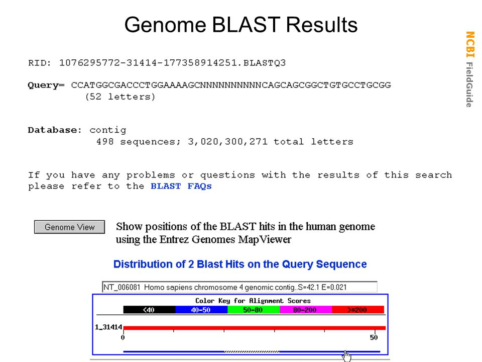 NCBI FieldGuide Genome BLAST Results