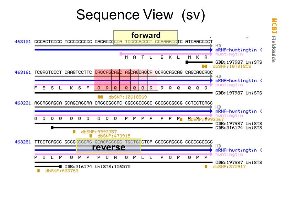 NCBI FieldGuide Sequence View (sv) forward reverse