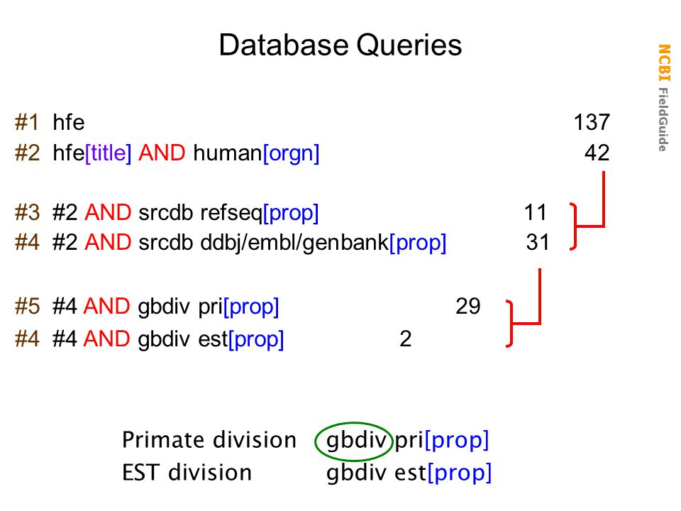 NCBI FieldGuide #1 hfe 137 #2 hfe[title] AND human[orgn] 42 #3 #2 AND srcdb refseq[prop] 11 #4 #2 AND srcdb ddbj/embl/genbank[prop] 31 Database Querie