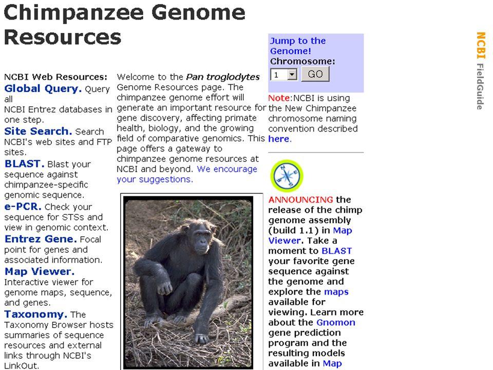 NCBI FieldGuide Gen Biol: Gen Resources