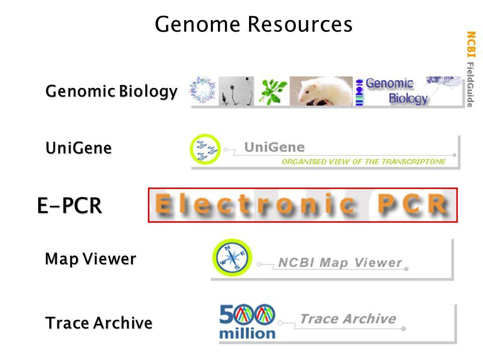 NCBI FieldGuide Genome ResourcesUniGene Trace Archive Map Viewer Genomic Biology E-PCR